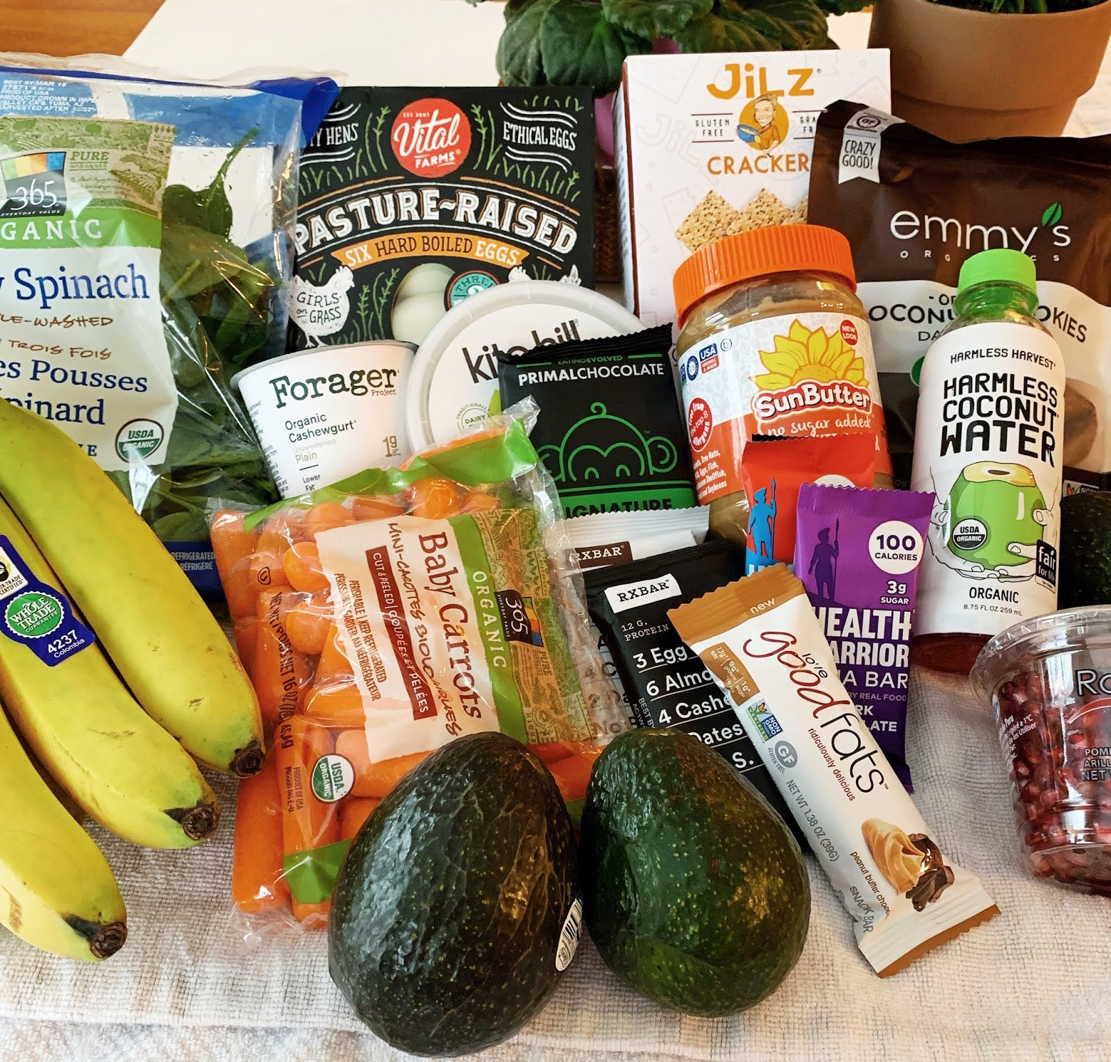 Grocery Shopping Haul- College Edition – Sweet Life Shares